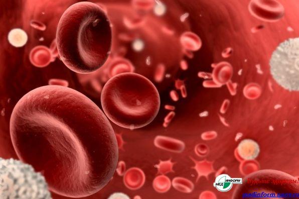 О чем расскажет биохимический анализ крови - Будьте здоровы ...